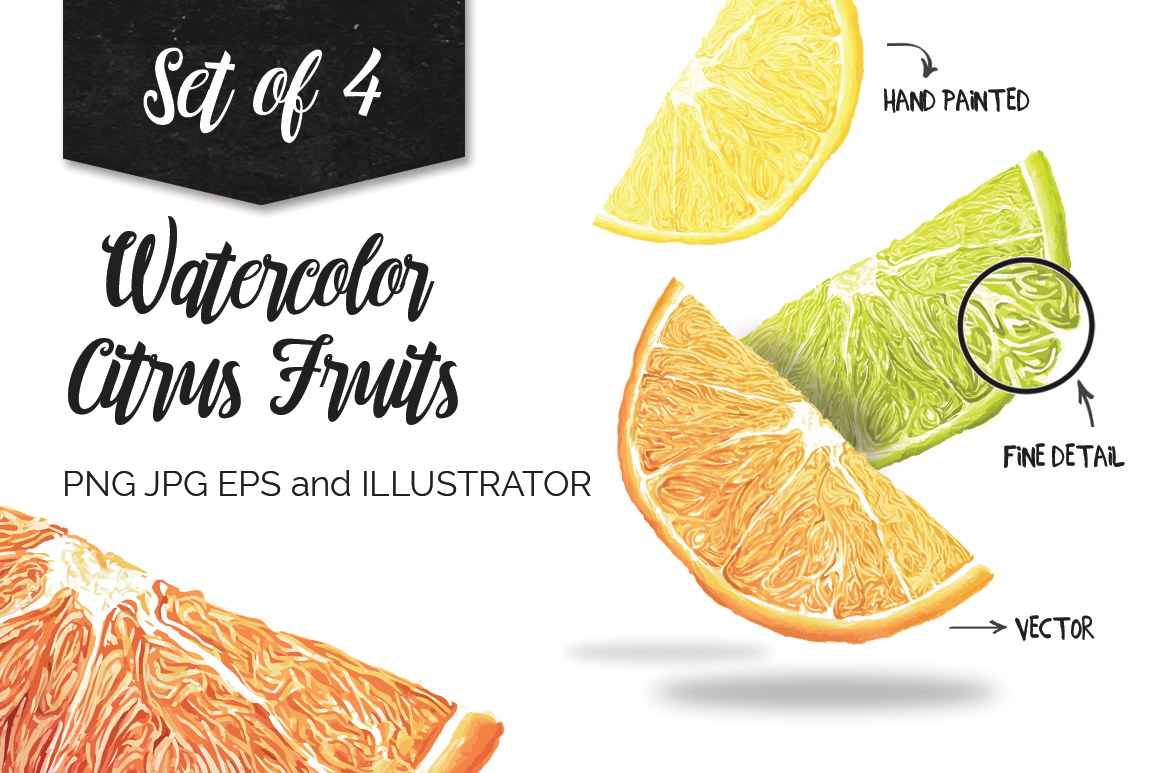 Watercolor Citrus Fruits