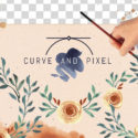 Welcome to Curve and Pixel